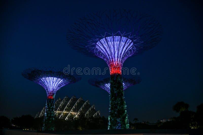 De tuin van Singapore Boedha, chinatown Supertrees in Tuinen door de Baai, op het gebied van de jachthavenbaai in Singapore wordt stock afbeelding