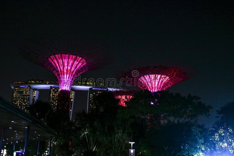 De tuin van Singapore Boedha, chinatown Supertrees in Tuinen door de Baai, op het gebied van de jachthavenbaai in Singapore wordt royalty-vrije stock afbeelding