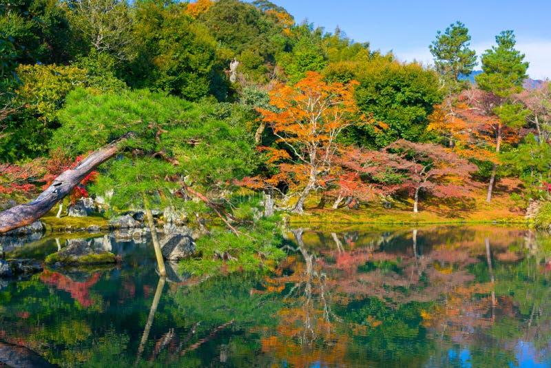 De Tuin van de Sogenvijver in Tenryuji-Tempel stock foto's