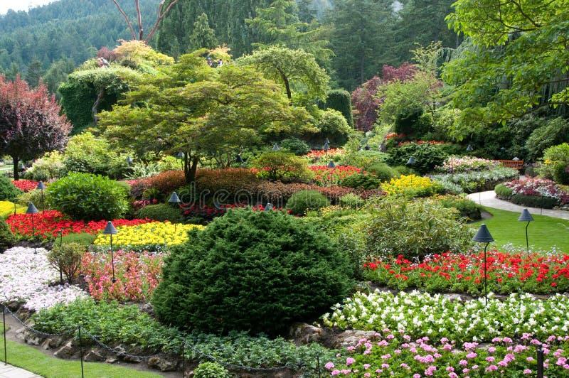 De Tuinen van Butchart - de Gedaalde mening van de Tuin royalty-vrije stock fotografie