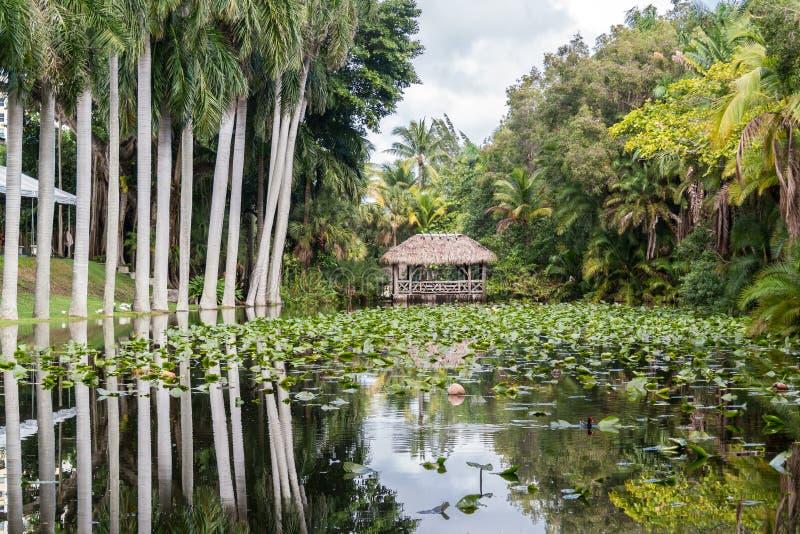 De tuinen van het bonnethuis, Voet Lauderdale, Florida stock foto's
