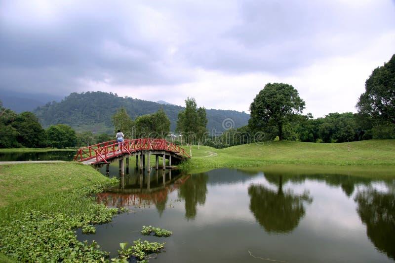 De Tuinen van het Meer van Taiping royalty-vrije stock afbeeldingen
