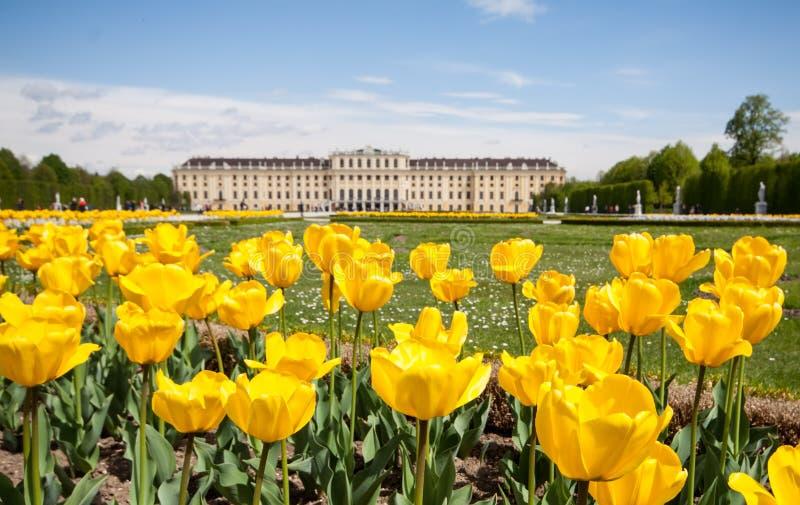 De Tuinen van het Paleis van Schonbrunn in Wenen, Oostenrijk stock afbeelding