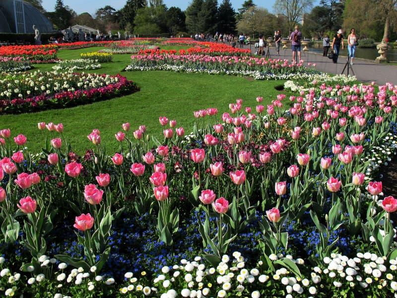 De Tuinen van Kew in Londen stock foto