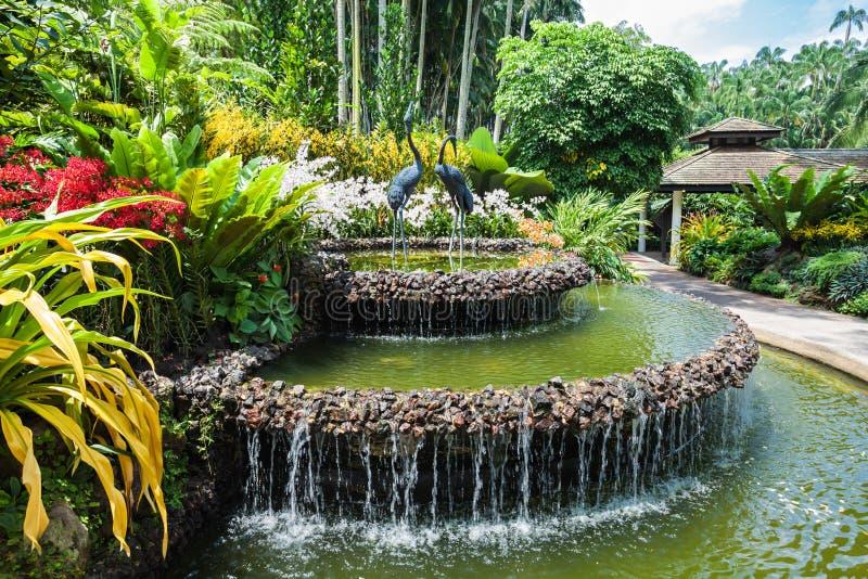 De Tuinen van Singapore royalty-vrije stock afbeelding