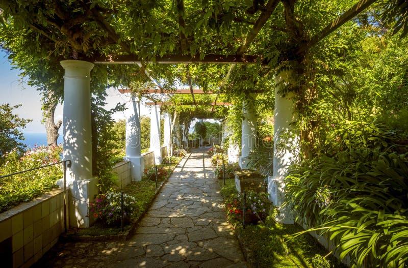 De tuinen van Villa San Michele, Capri-eiland, Italië stock afbeeldingen