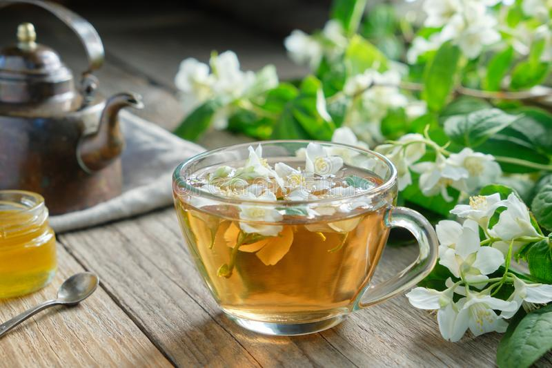 De tuinjasmijn bloeit, gezonde aftrekselkop, honingskruik en de uitstekende ketel van de koperthee royalty-vrije stock afbeelding