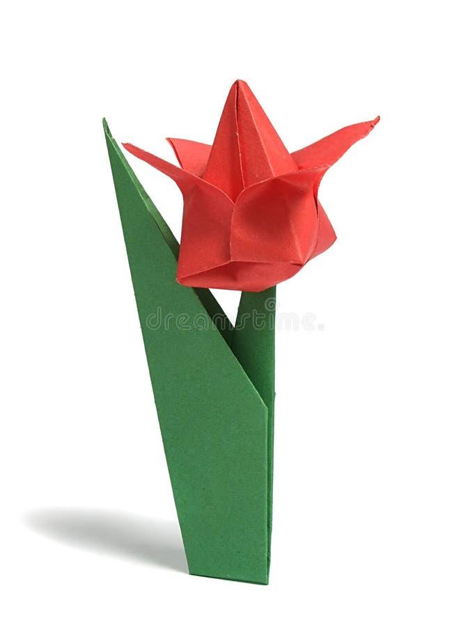 De tulp van de origami over wit stock afbeeldingen