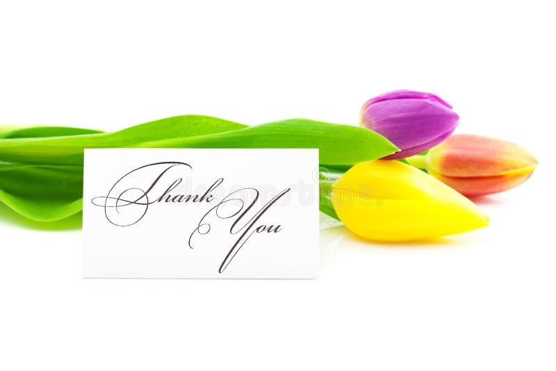 De tulpen en een ondertekende kaart danken u stock afbeelding