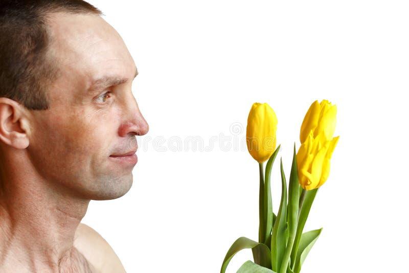 De tulpen van een mensenholding stock afbeeldingen
