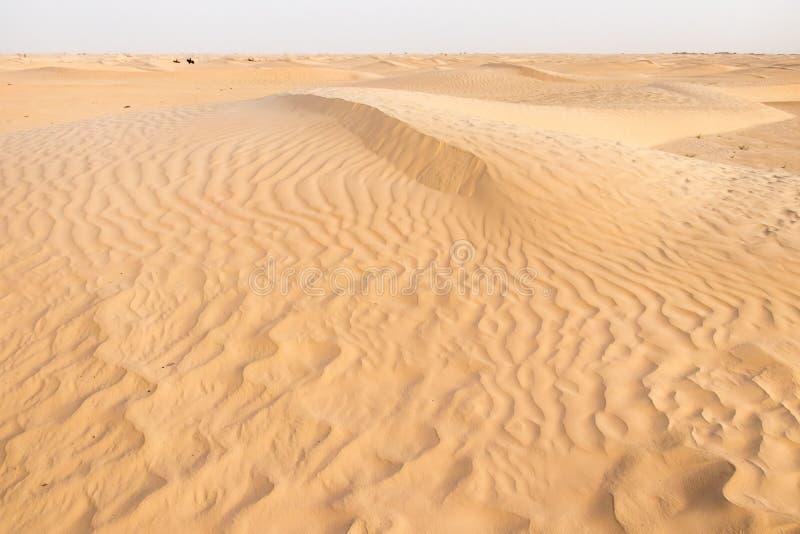 De Tunesische woestijn van de Sahara dichtbij de stad van Douz, Afrika royalty-vrije stock afbeeldingen