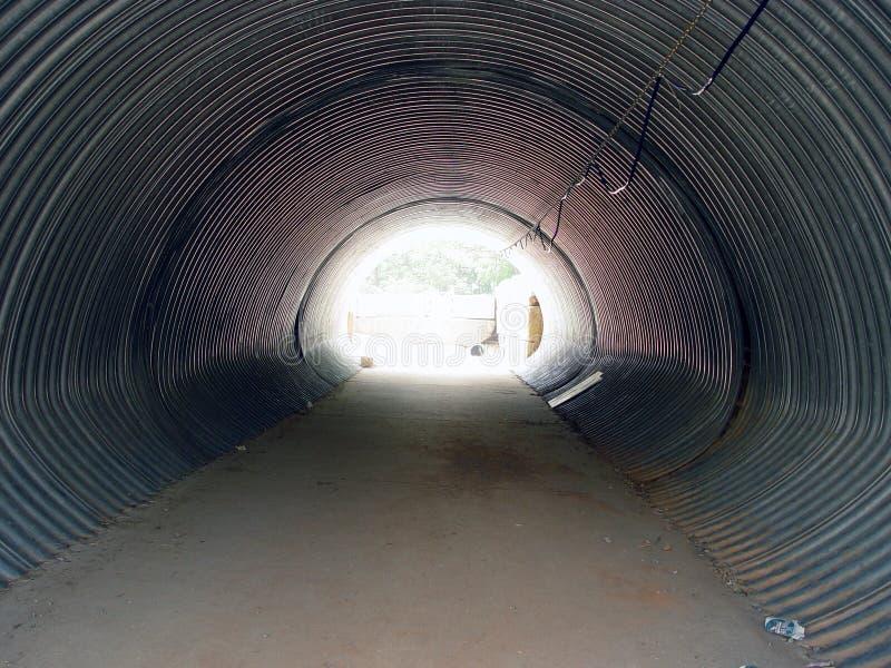 De Tunnel van het vee stock foto