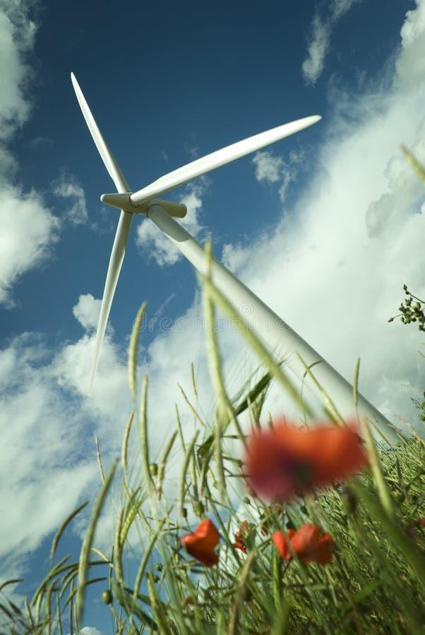 De Turbine van de wind op een Gebied van de Papaver stock afbeeldingen
