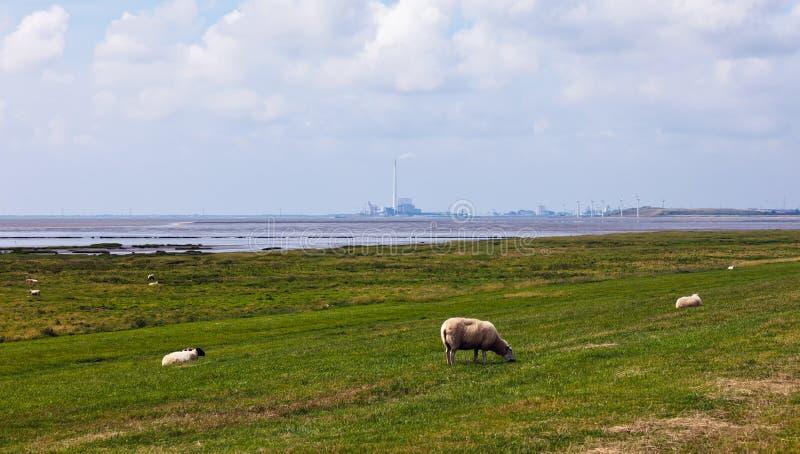 De turbines van de elektrische centrale en van de Wind stock fotografie