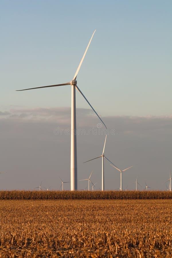 De turbines van de wind in een verticaal van het graangebied royalty-vrije stock afbeeldingen