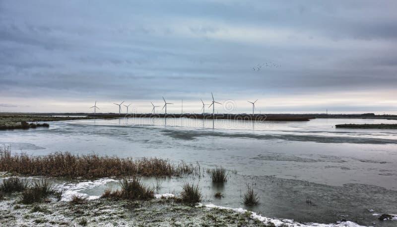 De turbines van de wind in het Deense Moeras stock foto's