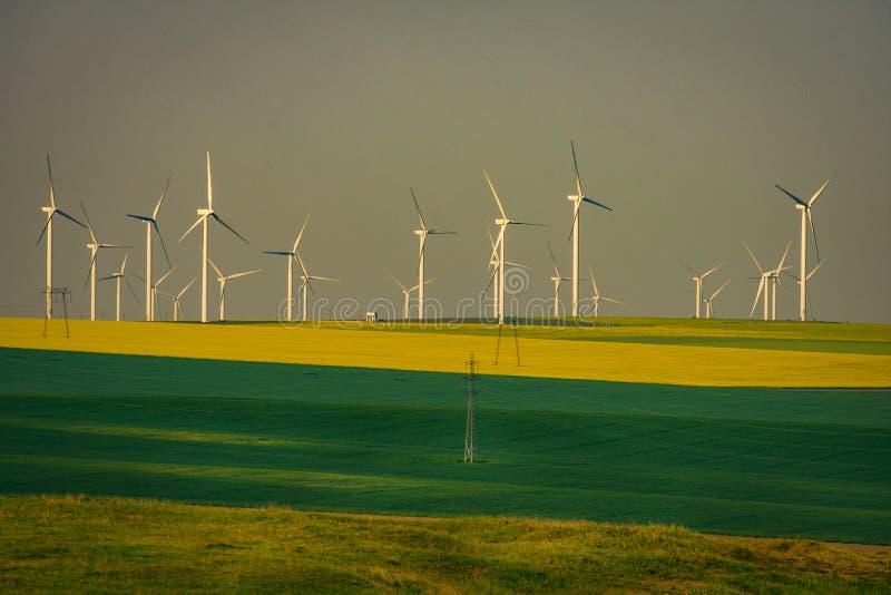 De turbines van de Eolianwind worden gebruikt die om ecologische groene electricit te produceren stock foto's