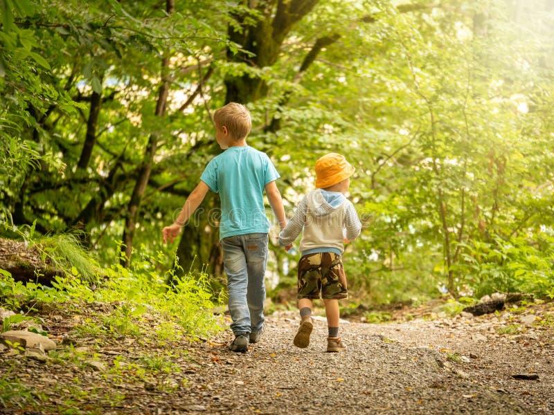 De två pojkarna går på en slinga i den gröna skogen och blick i olika riktningar royaltyfria bilder