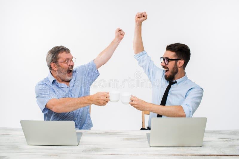 De twee collega's die op kantoor aan witte achtergrond samenwerken royalty-vrije stock afbeelding