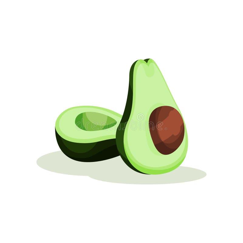 De twee helften van verse groene avocado met been Tropisch Fruit Organisch en gezond product Superfoodthema Vlakke vector stock illustratie