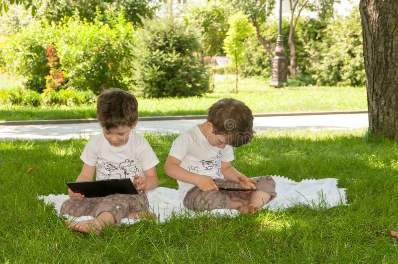De tweelingenjongens die op groen gras in de zomer zitten parkeren stock afbeeldingen