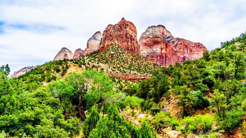 De Twin Brothers and East Temple Mountains, gezien vanaf de Parus Trail in Zion National Park, Utah royalty-vrije stock foto's