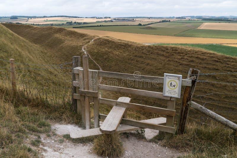 De typische Engelse stijl van het land met hondpoort die tot het Kasteel Dorset Dorchester het Verenigd Koninkrijk leiden van het royalty-vrije stock afbeeldingen
