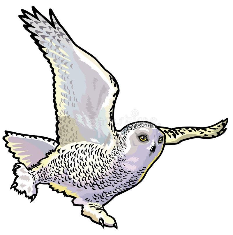 Sneeuw uil royalty-vrije illustratie