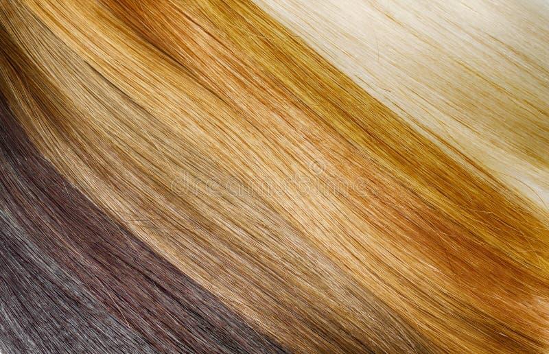 De uitbreidingspalet van het premiehaar met kleurensteekproeven van blonde aan stock afbeeldingen