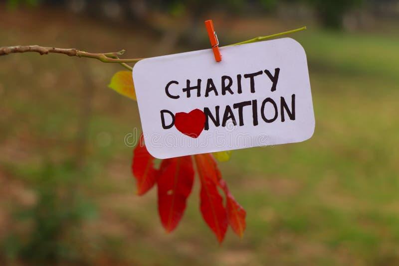 De uitdrukking van de liefdadigheidsschenking met de hand geschreven op document dat aan een tak van een boom wordt geknipt royalty-vrije stock foto