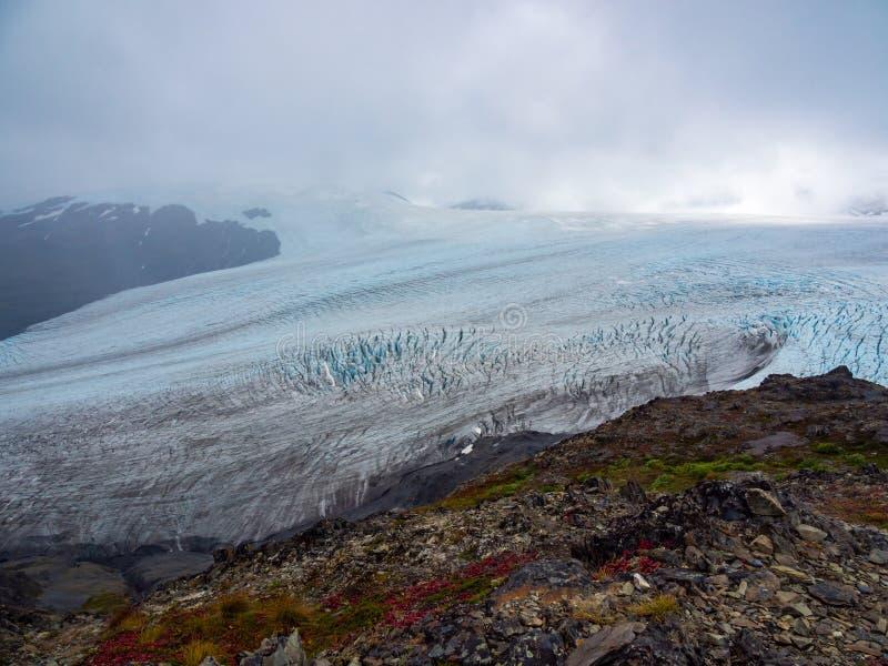 De uitgangsgletsjer en Harding Icefield overzien, Kenai-Fjorden Nationaal Park stock foto