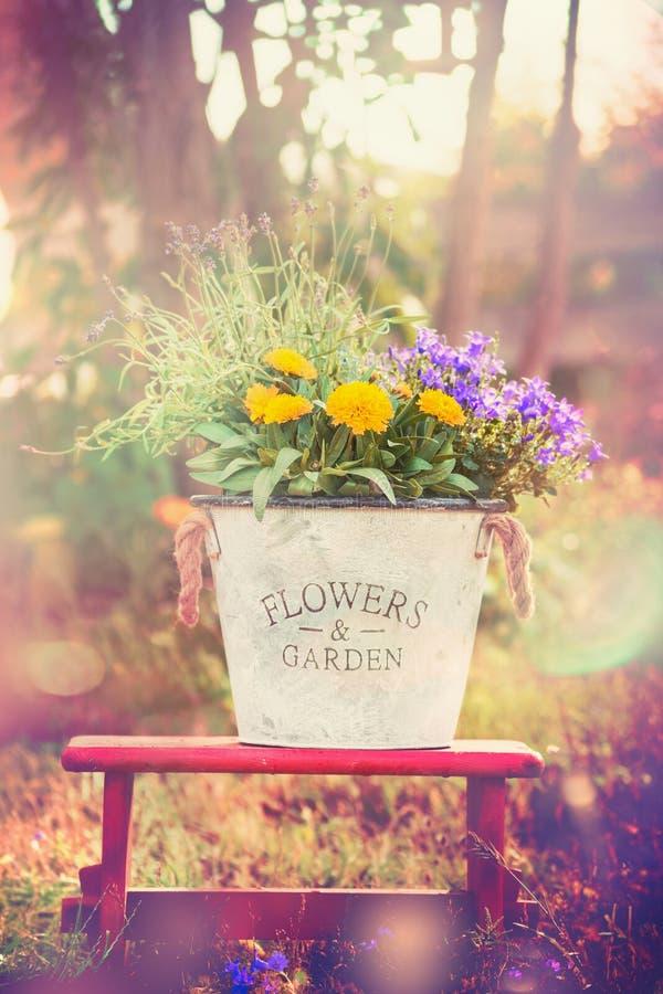 De uitstekende bloememmer met tuin bloeit op rood weinig kruk over de zomer of de herfstaard stock afbeelding