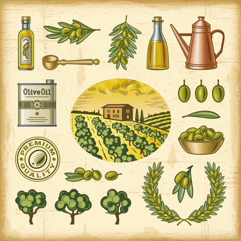 De uitstekende kleurrijke reeks van de olijfoogst royalty-vrije illustratie