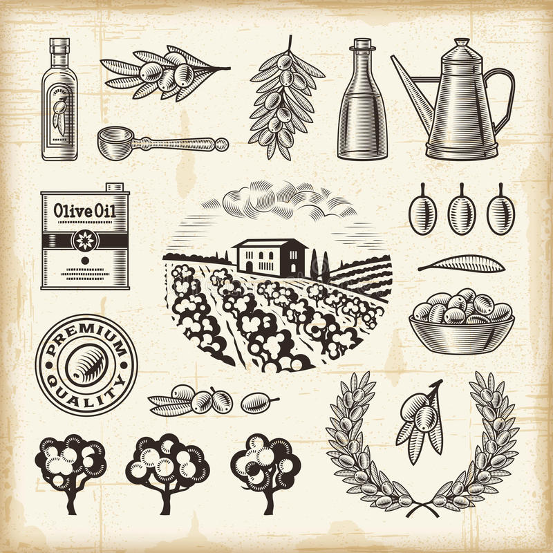 De uitstekende reeks van de olijfoogst stock illustratie