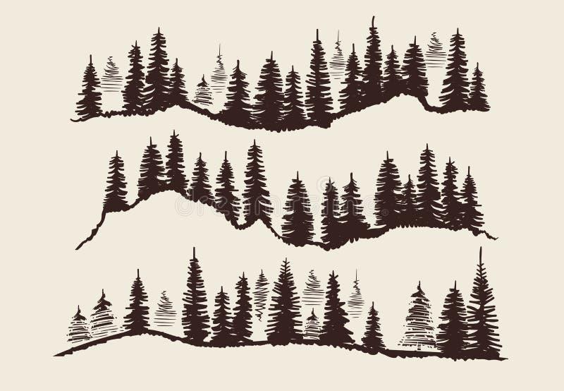 De uitstekende van de schetssparren van de gravure boskrabbel vectorreeks royalty-vrije illustratie