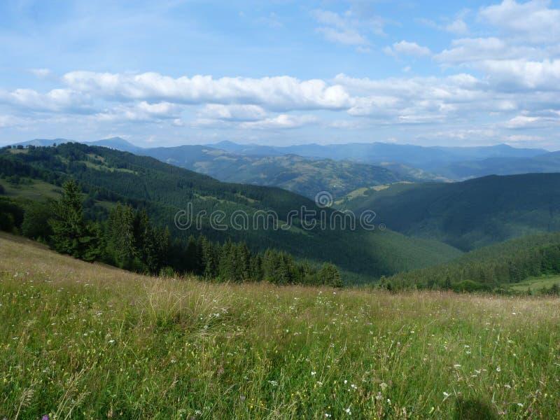 De ukrainska Carpathiansna royaltyfria foton