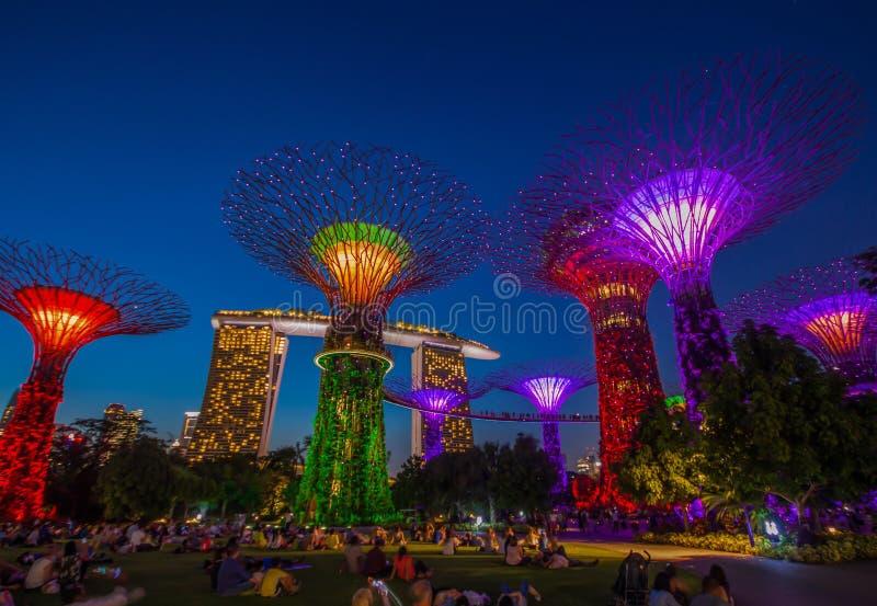 De underbara trädgårdarna vid fjärden, Singapore arkivbilder