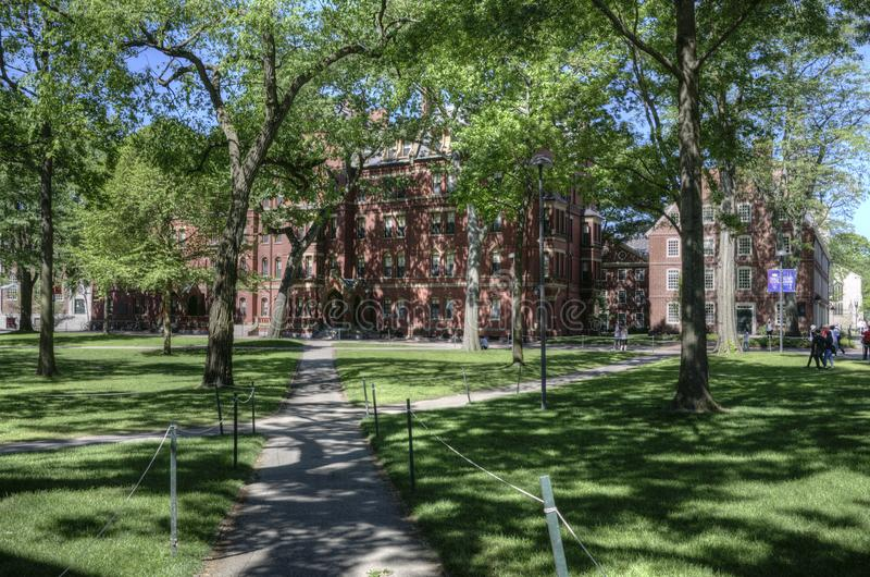 De Universitaire campus van Harvard, Cambridge, de V.S. stock afbeeldingen