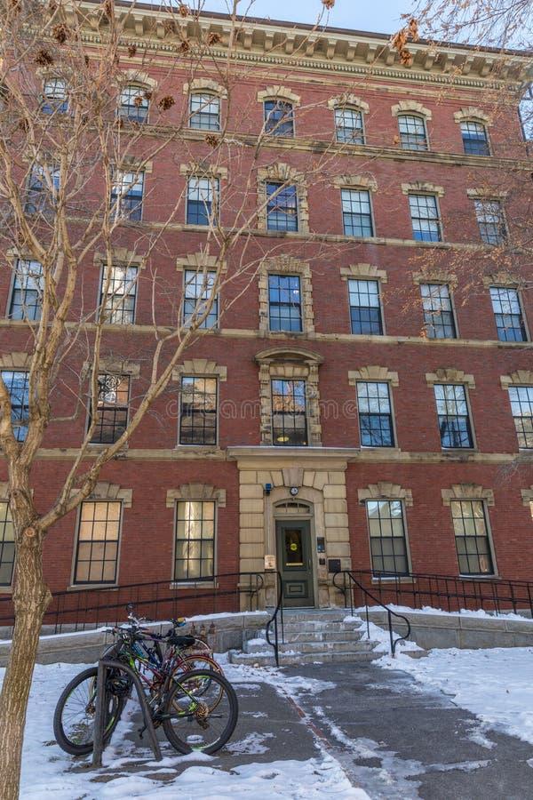 De Universitaire historische bouw van Harvard in Cambridge in Massachusetts de V.S. stock fotografie