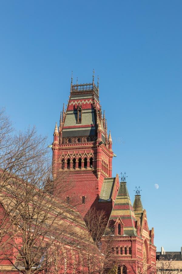 De Universitaire historische bouw van Harvard in Cambridge in Massachusetts de V.S. stock foto