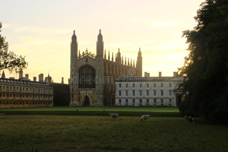De Universiteit Cambridge van koningen stock fotografie