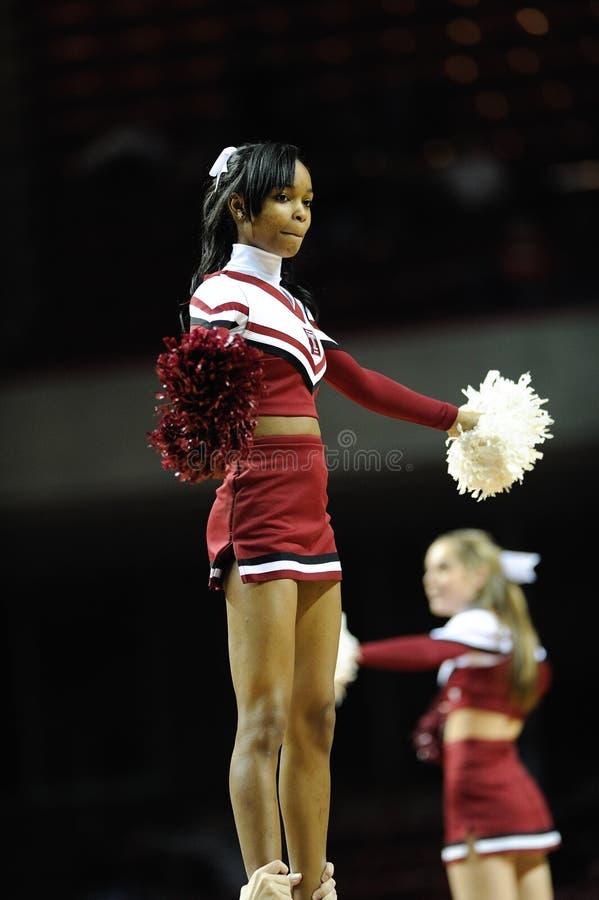 De Universiteit van de tempel cheerleader stock afbeeldingen