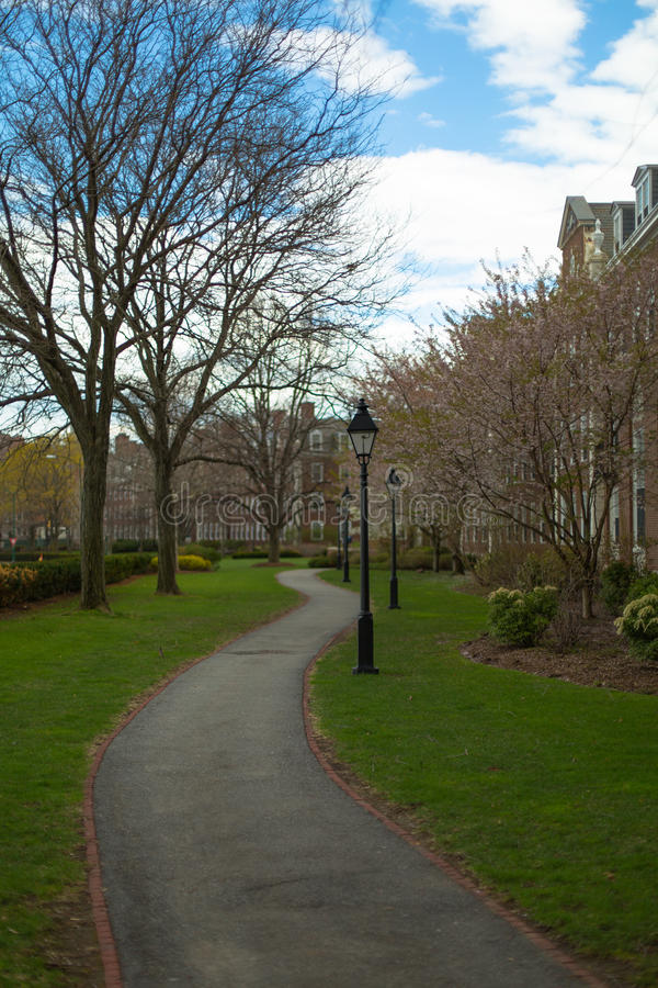 De Universiteit van Harvard van het militairengebied stock afbeelding