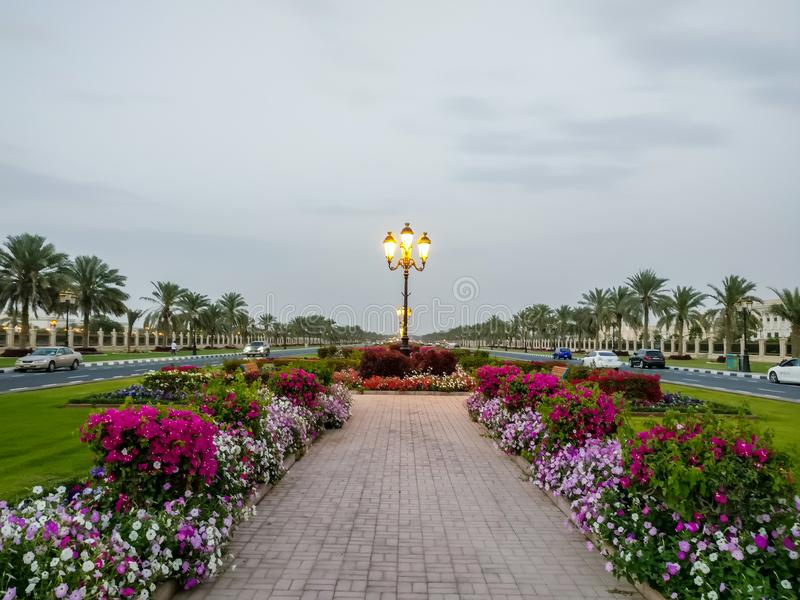 De universiteit van mooie de campuswegen van Sharjah met floradecoratie, de V.A.E stock afbeelding