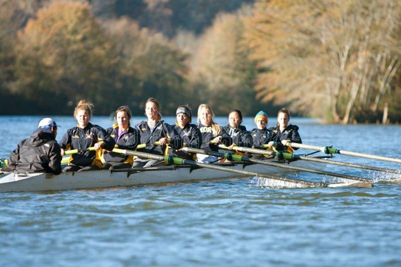 De Universiteitsbemanning Team Rows Down Atlanta River van vrouwen royalty-vrije stock afbeelding