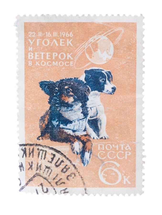 DE USSR - CIRCA 1966: de zegel in Rusland wordt gedrukt toont Twee die stock foto