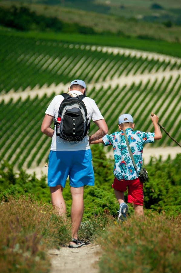 De vader en de zoon gaan op een wijngaardachtergrond royalty-vrije stock afbeeldingen