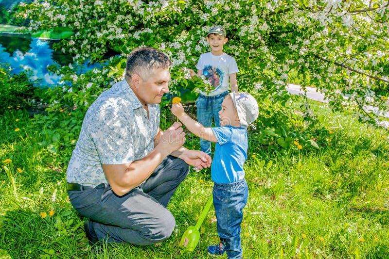 De vader en de zoon brengen tijd aan een gang in het Park in de zomer op een Zonnige dag door stock foto's