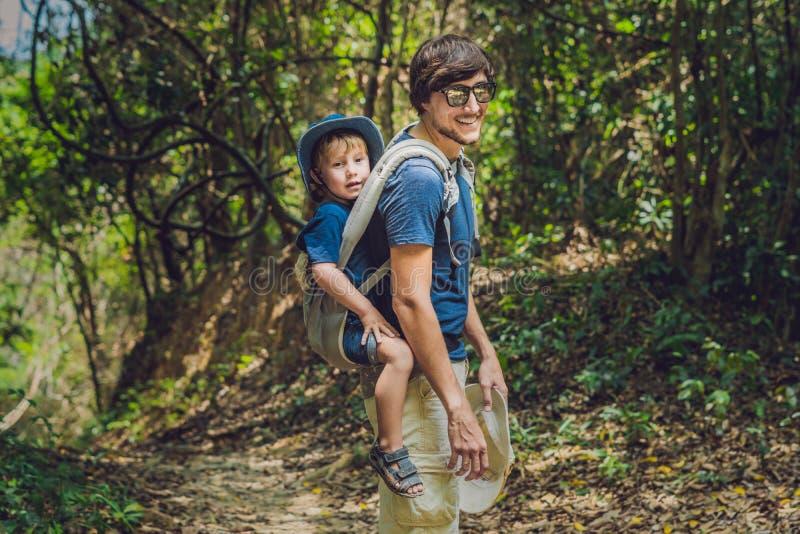 De vader vervoert zijn zoon in baby het dragen wandelt in de bostoerist vervoert een kind op zijn rug in de aard van Vi stock afbeeldingen