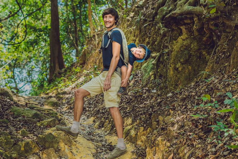 De vader vervoert zijn zoon in baby het dragen wandelt in de bostoerist vervoert een kind op zijn rug in de aard van Vi royalty-vrije stock foto